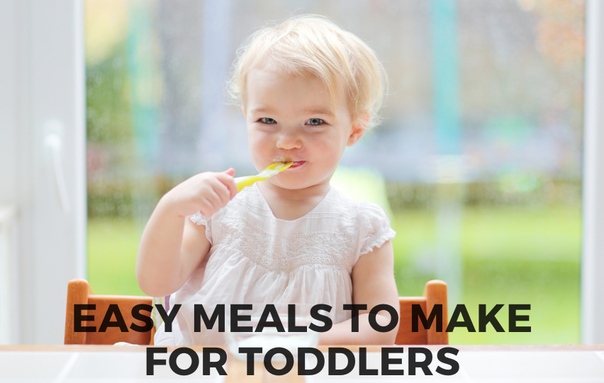 Discover These Easy Meals to Make for Toddlers